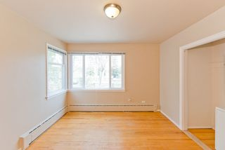 Photo 15: 11202 55 Street in Edmonton: Zone 09 House for sale : MLS®# E4176079