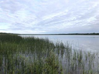 Photo 19: 624 RGE RD 251: Rural Athabasca County Rural Land/Vacant Lot for sale : MLS®# E4202176