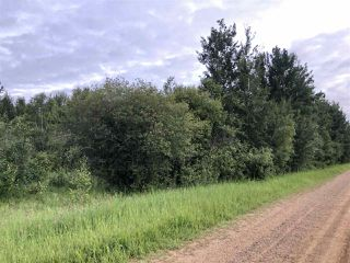 Photo 11: 624 RGE RD 251: Rural Athabasca County Rural Land/Vacant Lot for sale : MLS®# E4202176