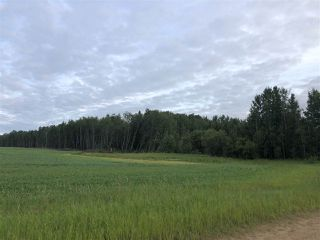 Photo 8: 624 RGE RD 251: Rural Athabasca County Rural Land/Vacant Lot for sale : MLS®# E4202176