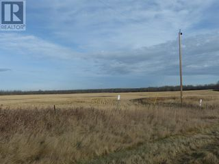 Photo 14: 72428 Range Road 180 in High Prairie: Agriculture for sale : MLS®# A1048154
