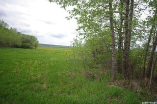 Photo 26: Weiss Waterfront Acreage in Big River: Lot/Land for sale : MLS®# SK834150