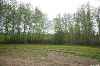Photo 14: Weiss Waterfront Acreage in Big River: Lot/Land for sale : MLS®# SK834150