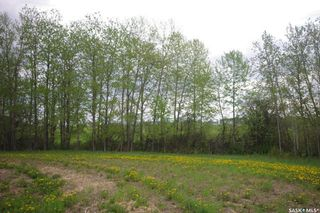 Photo 11: Weiss Waterfront Acreage in Big River: Lot/Land for sale : MLS®# SK834150