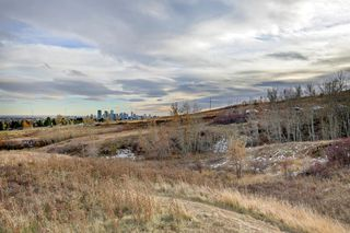 Photo 42: 1316 56 Avenue NW in Calgary: North Haven Upper Detached for sale : MLS®# A1057988