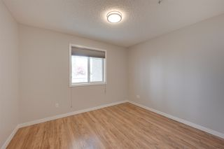 Photo 12: 102 2420 108 Street NW in Edmonton: Zone 16 Condo for sale : MLS®# E4167628