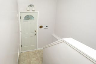 Photo 18: 11938 54 Street in Edmonton: Zone 06 House for sale : MLS®# E4175803