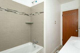Photo 17: 11938 54 Street in Edmonton: Zone 06 House for sale : MLS®# E4175803