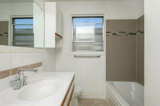 Photo 16: 11938 54 Street in Edmonton: Zone 06 House for sale : MLS®# E4175803