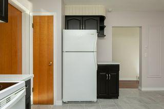Photo 11: 11938 54 Street in Edmonton: Zone 06 House for sale : MLS®# E4175803