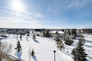 Photo 34: 465 2750 55 Street in Edmonton: Zone 29 Condo for sale : MLS®# E4188446