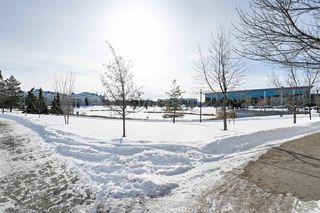Photo 33: 465 2750 55 Street in Edmonton: Zone 29 Condo for sale : MLS®# E4188446