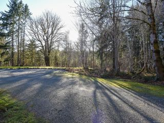 Photo 35: 3699 Burns Rd in COURTENAY: CV Courtenay West House for sale (Comox Valley)  : MLS®# 834832