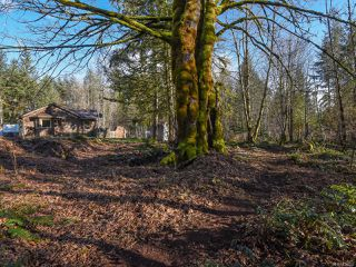 Photo 39: 3699 Burns Rd in COURTENAY: CV Courtenay West House for sale (Comox Valley)  : MLS®# 834832