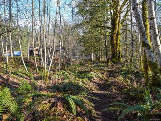 Photo 43: 3699 Burns Rd in COURTENAY: CV Courtenay West House for sale (Comox Valley)  : MLS®# 834832