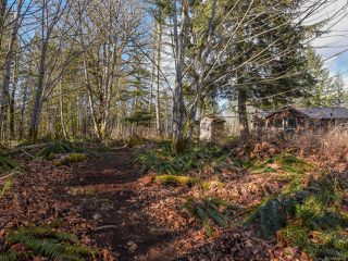 Photo 47: 3699 Burns Rd in COURTENAY: CV Courtenay West House for sale (Comox Valley)  : MLS®# 834832