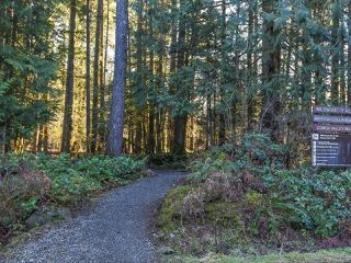 Photo 56: 3699 Burns Rd in COURTENAY: CV Courtenay West House for sale (Comox Valley)  : MLS®# 834832