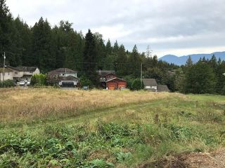 Photo 3: 7350 MARBLE HILL Road in Chilliwack: Eastern Hillsides Land for sale : MLS®# R2469933