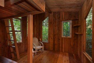 Photo 39: 1506 PARK Avenue: Roberts Creek House for sale (Sunshine Coast)  : MLS®# R2488385