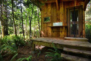 Photo 38: 1506 PARK Avenue: Roberts Creek House for sale (Sunshine Coast)  : MLS®# R2488385