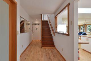 Photo 7: 1506 PARK Avenue: Roberts Creek House for sale (Sunshine Coast)  : MLS®# R2488385