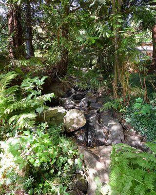 Photo 36: 1506 PARK Avenue: Roberts Creek House for sale (Sunshine Coast)  : MLS®# R2488385