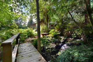 Photo 37: 1506 PARK Avenue: Roberts Creek House for sale (Sunshine Coast)  : MLS®# R2488385