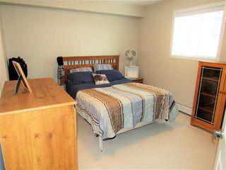 Photo 7: #313 400 SILVER BERRY RD NW in Edmonton: Zone 30 Condo for sale : MLS®# E4155929