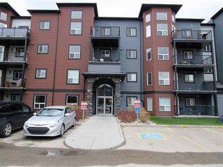 Photo 1: #313 400 SILVER BERRY RD NW in Edmonton: Zone 30 Condo for sale : MLS®# E4155929