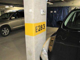 Photo 11: #313 400 SILVER BERRY RD NW in Edmonton: Zone 30 Condo for sale : MLS®# E4155929