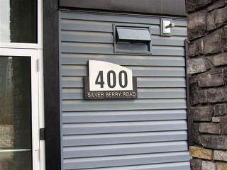 Photo 13: #313 400 SILVER BERRY RD NW in Edmonton: Zone 30 Condo for sale : MLS®# E4155929