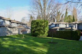 """Photo 23: 129 16335 14 Avenue in Surrey: King George Corridor Townhouse for sale in """"Pebble Creek"""" (South Surrey White Rock)  : MLS®# R2521910"""