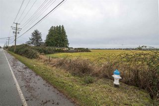 Photo 5: 5905 64 Street in Delta: East Delta Land Commercial for sale (Ladner)  : MLS®# C8035935