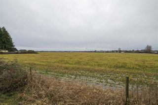 Photo 6: 5905 64 Street in Delta: East Delta Land Commercial for sale (Ladner)  : MLS®# C8035935