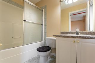 Photo 6: 4125 33a Avenue NW in Edmonton: Zone 29 House for sale : MLS®# E4167354