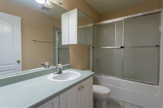 Photo 11: 4125 33a Avenue NW in Edmonton: Zone 29 House for sale : MLS®# E4167354