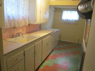 Photo 11: 11338 69 Street in Edmonton: Zone 09 House for sale : MLS®# E4178203
