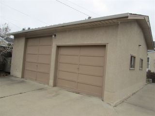 Photo 16: 11338 69 Street in Edmonton: Zone 09 House for sale : MLS®# E4178203