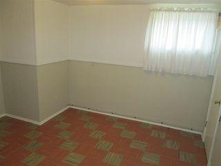 Photo 12: 11338 69 Street in Edmonton: Zone 09 House for sale : MLS®# E4178203