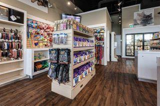 Photo 8: 4424 17 Street in Edmonton: Zone 30 Business for sale : MLS®# E4204352