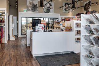 Photo 7: 4424 17 Street in Edmonton: Zone 30 Business for sale : MLS®# E4204352