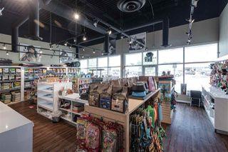 Photo 4: 4424 17 Street in Edmonton: Zone 30 Business for sale : MLS®# E4204352