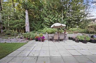 Photo 7: 1955 AUSTIN Avenue in Coquitlam: Central Coquitlam House for sale : MLS®# R2492713