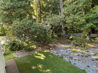 Photo 39: 1955 AUSTIN Avenue in Coquitlam: Central Coquitlam House for sale : MLS®# R2492713