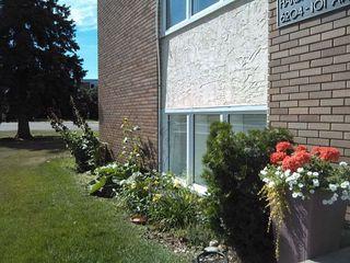 Photo 13: 1 6204 101 Avenue in Edmonton: Zone 19 Condo for sale : MLS®# E4185885