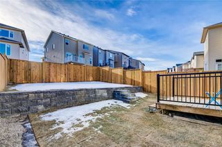 Photo 36: 112 NOLANLAKE Cove NW in Calgary: Nolan Hill Detached for sale : MLS®# C4284849