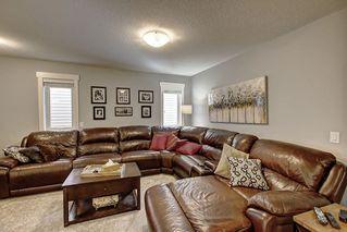 Photo 17: 20628 97 Avenue in Edmonton: Zone 58 House for sale : MLS®# E4192433