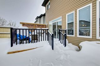 Photo 49: 20628 97 Avenue in Edmonton: Zone 58 House for sale : MLS®# E4192433