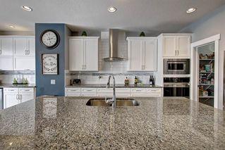 Photo 8: 20628 97 Avenue in Edmonton: Zone 58 House for sale : MLS®# E4192433