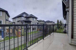 Photo 43: 925 ARMITAGE Court in Edmonton: Zone 56 House for sale : MLS®# E4199336